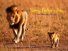 Lion Father