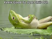 frog chill